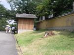 20080725kirikabu