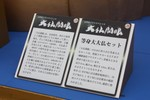 20100329daibutsu02