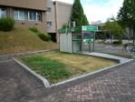 20100831shibafu