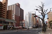 20110220hirokoku