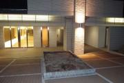 20110221sakura