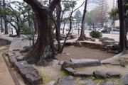 20110501kokutaiji02