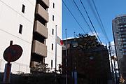 20111223kokki