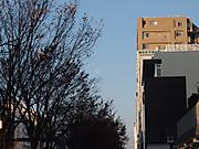 20120113tsuki