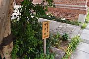 20120607zakuro03