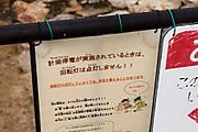 20120920togagawa04