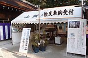 20130112kamigamo01