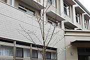 20130403kouji04