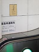 20140422matsumotokiyoshi02