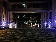20141111illumination